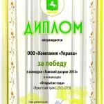 доплом Томский дворик 20150001