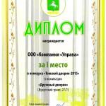 доплом Томский дворик 20150004
